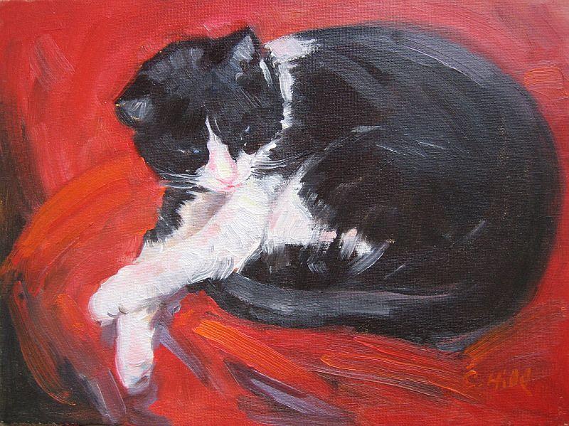 gallery-cat.jpg