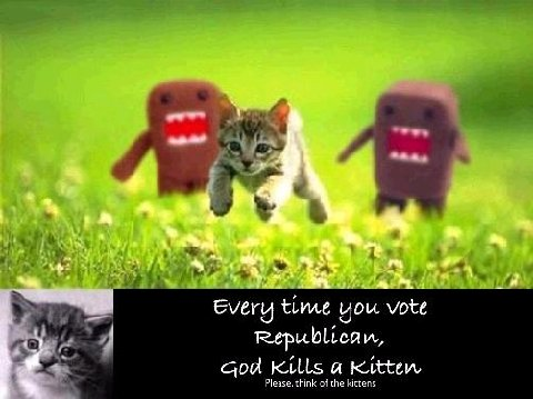republican-kitten.jpg