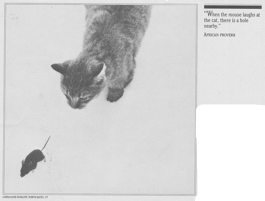 cat-calendar-cat-after-mouse-1991.jpg