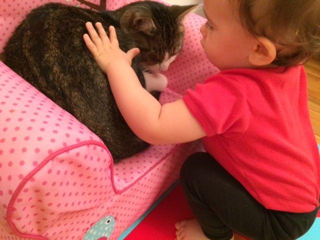charlotte-pets-fitz-gently.jpg